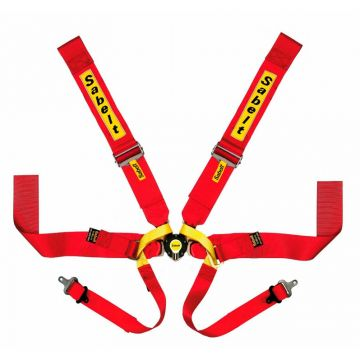 Sabelt Lightweight 6 Point Single Seater Harness