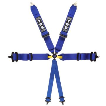 TRS Magnum Ultralite Sports Prototype 6 Point FIA Harness Belt