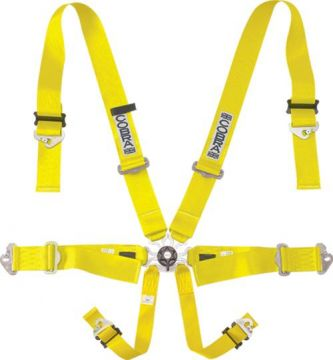 Cobra Evo full lightweight 6 Point FIA SFI Harness