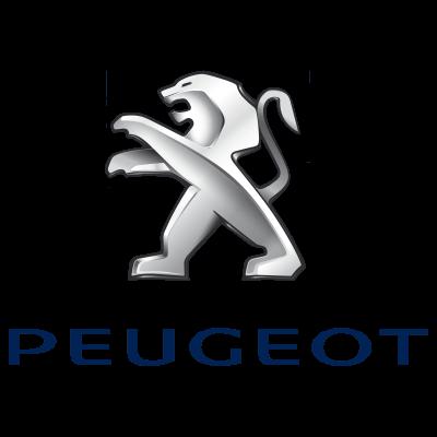 Peugeot Sport Seats